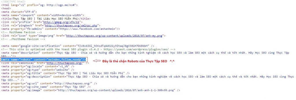 Thẻ chặn robots.txt của Thực Tập SEO