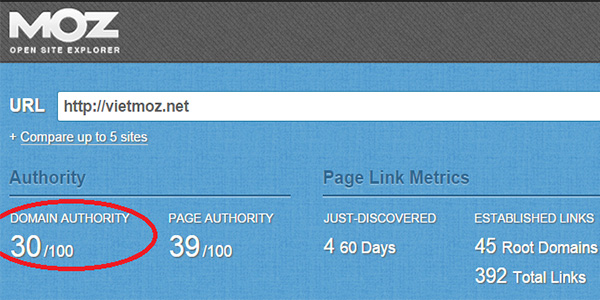 Kiểm tra bảng Open Site Explorer