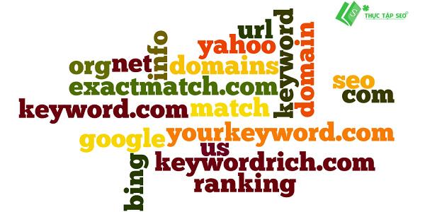 Exact Match Domain (EMD)