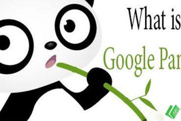 Google panda là gì?
